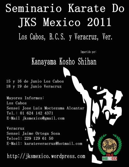 Seminario internacional 2011